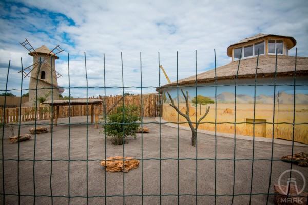 Художественная роспись стен в вольерах  в Биопарке в Одессе | Aрт-студия «Peach»