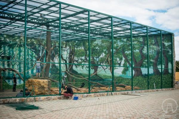 Художественная роспись стен в Биопарке в Одессе | Aрт-студия «Peach»